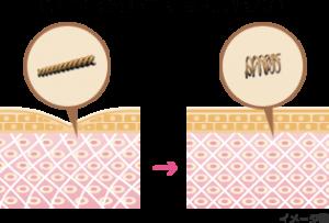 皮膚引き締まり効果